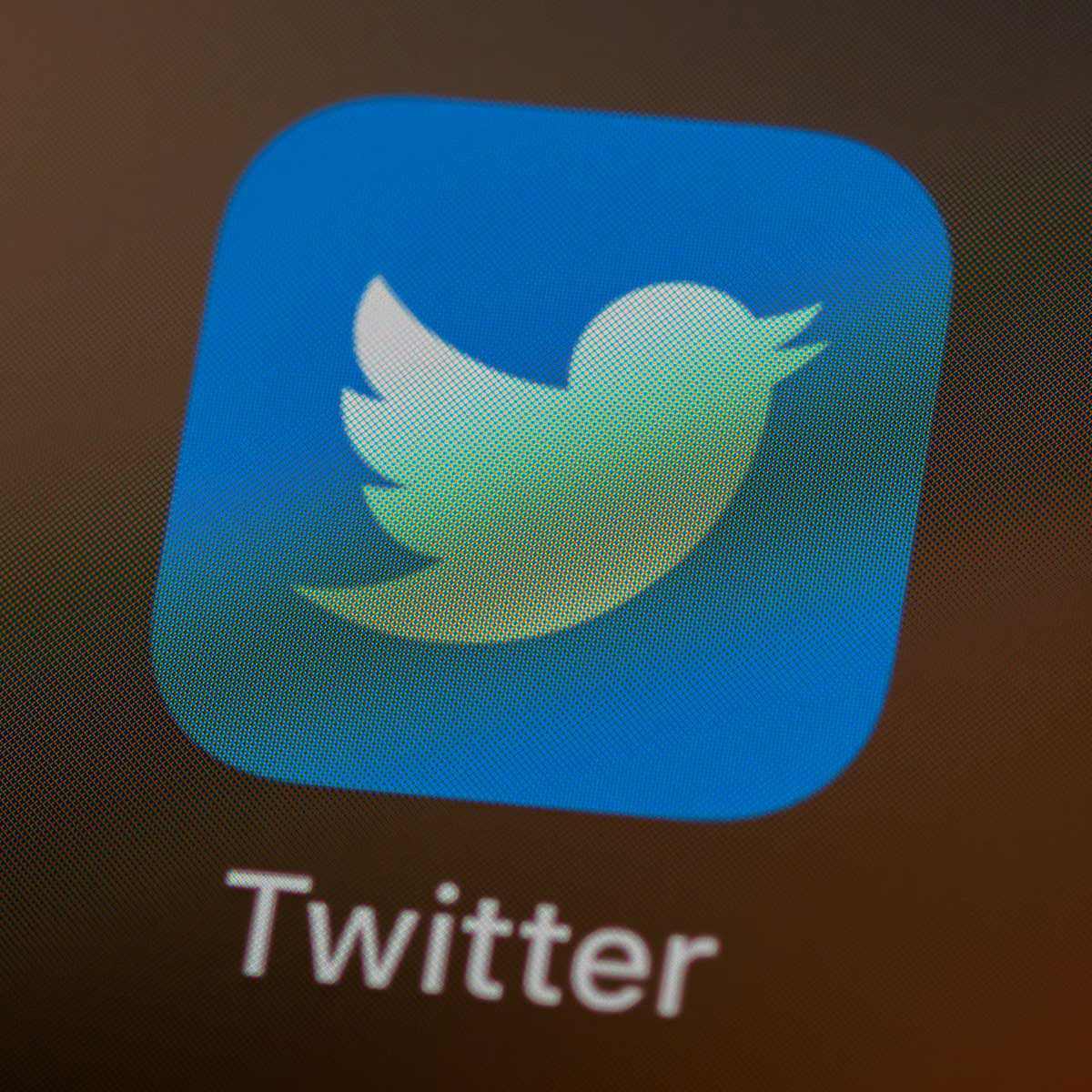 Twitter icon on screen